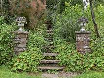 Garden steps. Garden landscaping and steps between two columns to an upper level Royalty Free Stock Photography