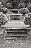 Garden steps. Flights of wooden steps in a formal Thai garden Stock Photo