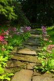 Garden Steps Stock Photos