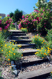 Garden Steps. Supporting various blooming flowers Royalty Free Stock Images