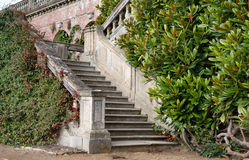 Garden Steps leading to an English Stately Home. With Laurel growing alongside Stock Images