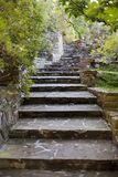 Garden Steps Stock Images