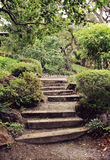 Garden Steps Royalty Free Stock Photo