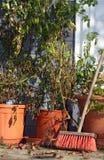 Garden still life Stock Image