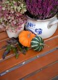 Garden still life in autumn stock photos