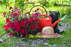 Garden still life with petunia flowers, straw hat, watering can and boots Stock Photos