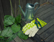 Garden still-life with watering-can and gloves Royalty Free Stock Photo
