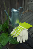 Garden still-life with watering-can and gloves Stock Photos