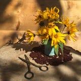Garden still life with yellow jerusalem artichoke flowers royalty free stock photos