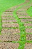 Garden stone path Royalty Free Stock Photos