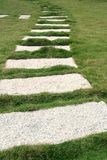Garden stone path. On a lawn Stock Photography