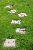 Garden stone path. With grass growing up between the stones Stock Photos