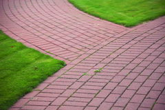 Garden stone path with grass, Brick Sidewalk Royalty Free Stock Photography