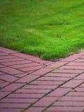Garden stone path with grass, Brick Sidewalk Royalty Free Stock Image