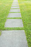 Garden stone path with grass growing up Royalty Free Stock Photo