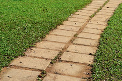 Garden stone path with grass Stock Photography