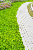 Garden stone path with grass Royalty Free Stock Photo