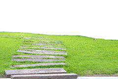 Garden stone path with grass growing up between the stones, Stock Photos