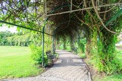 Garden stone path in park Stock Photo