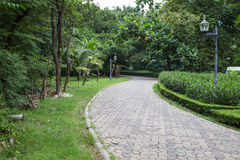 Garden stone path in park Royalty Free Stock Photography