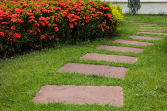 Garden. Stone walkway into pretty garden Royalty Free Stock Photo