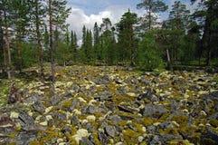 Garden of Stones. Royalty Free Stock Image
