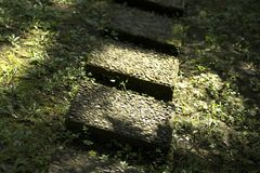 Garden Stones. Slabs forming a garden path in sunlight stock images