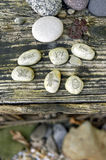 Garden Stones love trust joy. Word stones: LOVE, TRUST, JOY, with a butterfly,dragonfly, and a ladybug set on a rustic table in the garden Stock Images