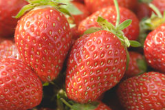 Garden strawberries close-up Stock Images