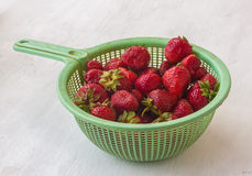 Garden strawberries in green colander Stock Photography