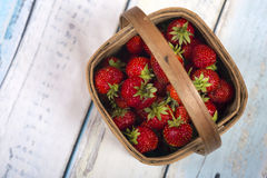 Garden Strawberries in wooden basket. On blue wooden background royalty free stock images