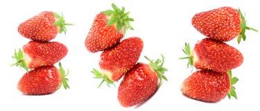 Garden strawberry Stock Image