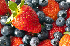 Garden strawberry and blueberries Royalty Free Stock Image
