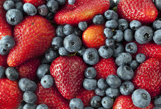 Garden strawberry and blueberries Royalty Free Stock Photo