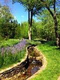 Garden Stream. Beautiful Chanticleer Garden Stock Photos