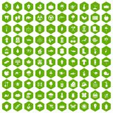 100 garden stuff icons hexagon green. 100 garden stuff icons set in green hexagon isolated vector illustration Stock Photos