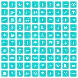 100 garden stuff icons set grunge blue Royalty Free Stock Photography