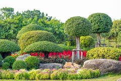 Garden in Suan Luang Rama 9 Stock Photography