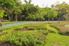 Garden in Suan Luang Rama 9 public park, Bangkok, Thailand Royalty Free Stock Photo