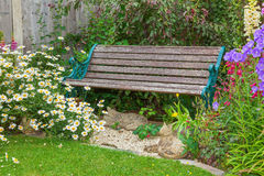 Garden with summer flowers and wooden bench. Royalty Free Stock Photography