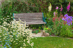 Garden with summer flowers and wooden bench. Royalty Free Stock Images