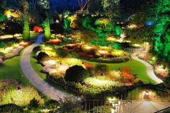 Garden summer night royalty free stock images