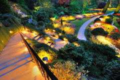 Garden summer night royalty free stock photo