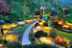 Garden summer night royalty free stock photo