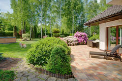Garden at summer time. Picture of beauty garden at summer time stock photography