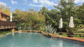 Garden with Swiming Pool Royalty Free Stock Image