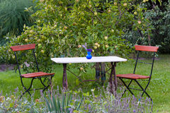 Garden table and chairs Royalty Free Stock Photos