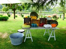 Garden table with drinks and fruits at children`s party royalty free stock photo