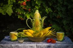 Breakfast on the garden. Hot boiled corn with dill, salt and tomatoes. Royalty Free Stock Photography