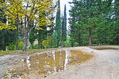 The garden of Tatoi Palace Greece stock images
